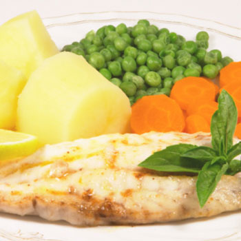Lemon Grouper